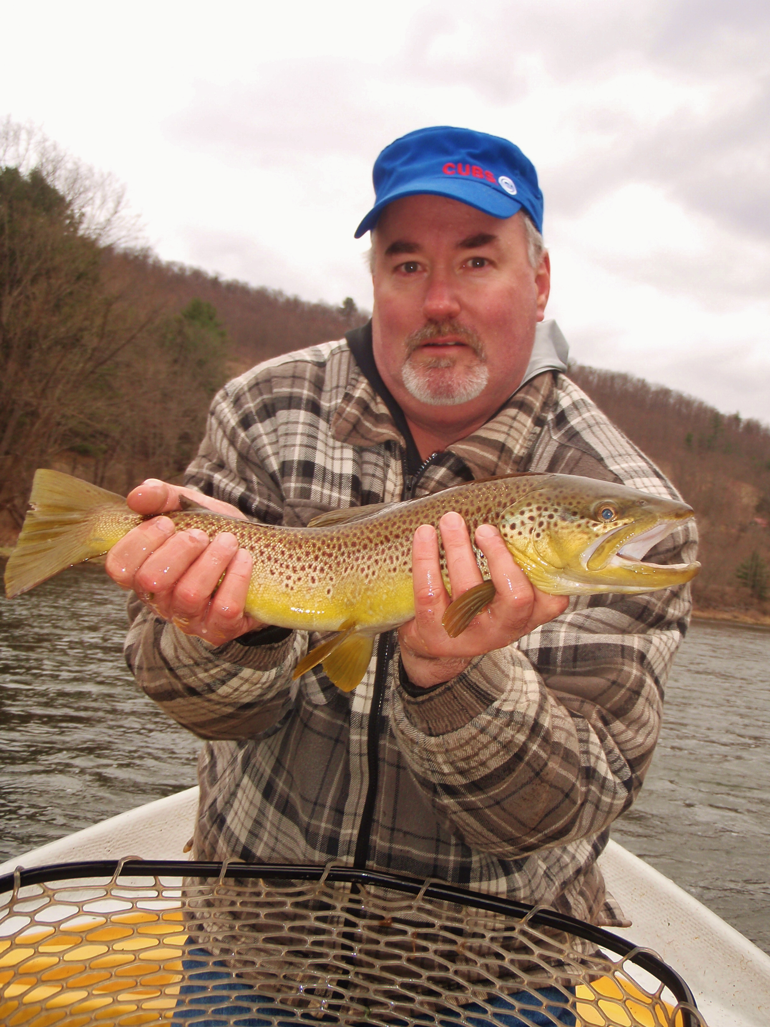 big Upper Delaware river brown