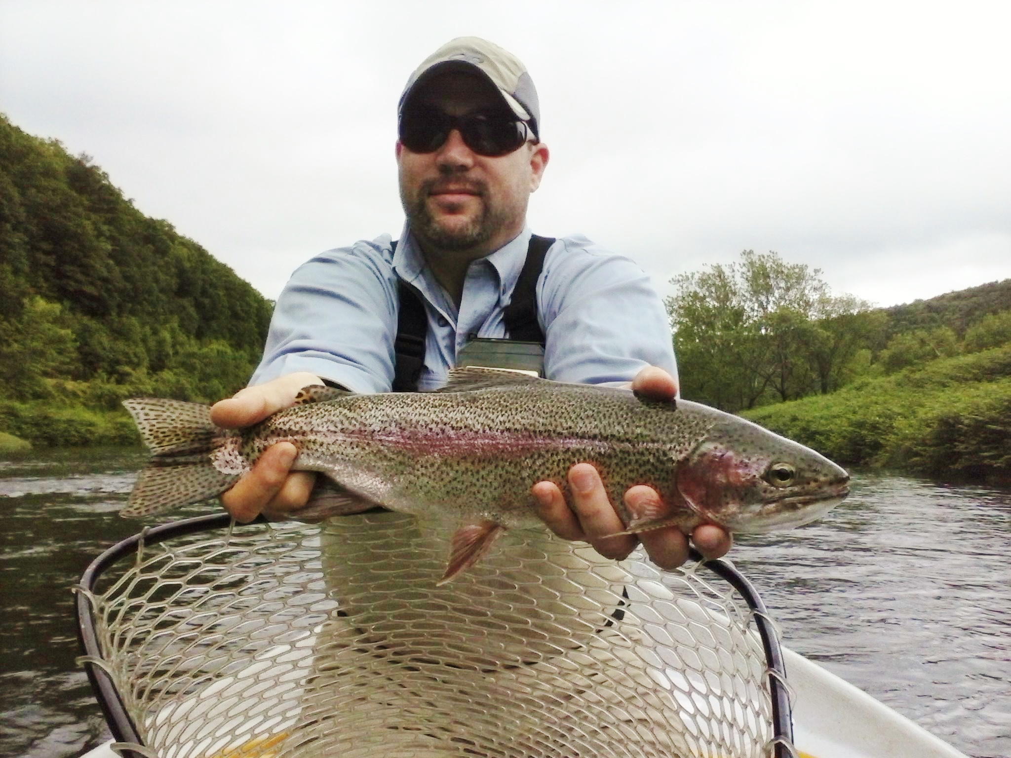 Fly rod rainbow trout