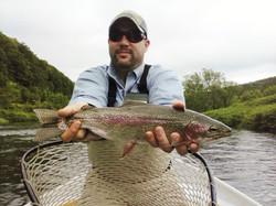 Fly rod rainbow trout