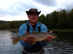 Big brown on a dry fly