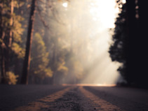 Christopher Barnes: A Thousand Roads