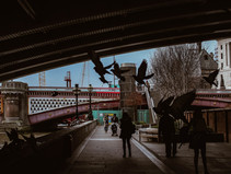 Jasmina Bolfek-Radovani: Their City/Leur Cité/Njihov Grad
