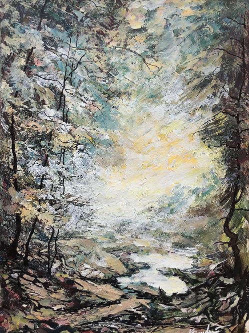 Light & Forest 2