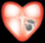 GENOMSKINLIG_hjärta-kunskap_(CLAS).png