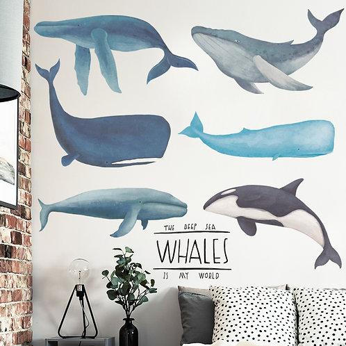 Wallsticker Whale