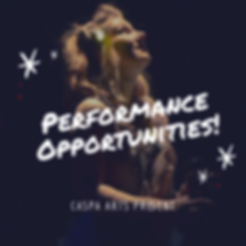 PerformanceOpportunities.png