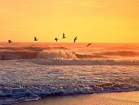Playalinda Beach Sunset