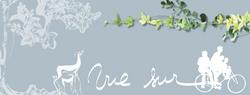 bannière de blog