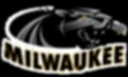 UW-MILWAUKEE*