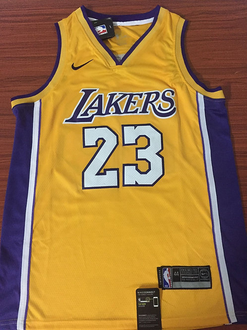 Los Angeles Lakers James #23 Icon Jersey