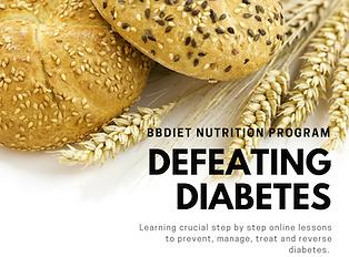 diabetes reversal program BBDiet dietiti