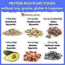 Protein Rich Plant foods BBDiet
