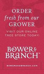 bower-branch-300x500-order-fresh-preview