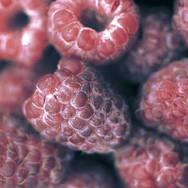 Royalty Raspberries