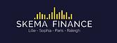Skema Finance.png