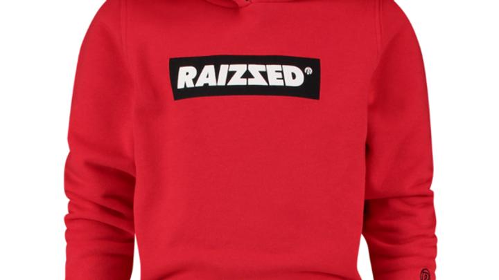RAIZZED Hoodie R220RBN34603 607