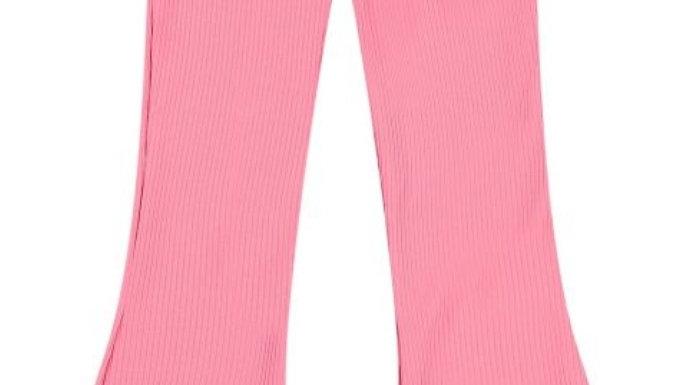 Raizzed Flair Pants Porto in Warm Peach