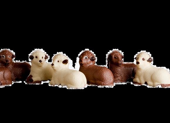 Šokoladinis Velykų avinėlis