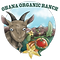 New Ranch Logo.png