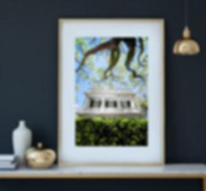 Treehouse frame.jpg