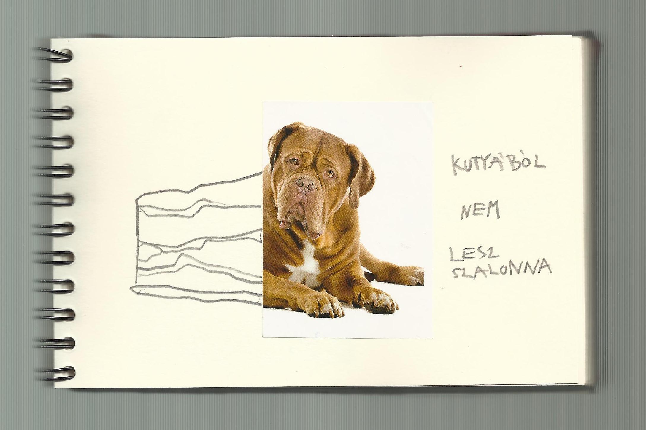 One dog 09