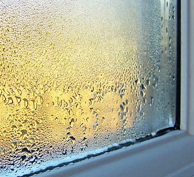 window_condensation_thumb.jpg
