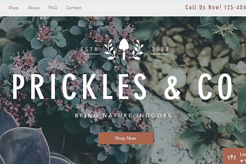 PRICKLES & CO(E-COMMERCE)