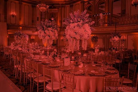 1-Weddings-Gallery-_edited.jpg
