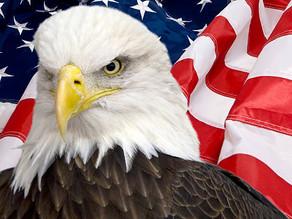 Veterans Organizations List