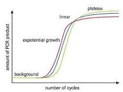 Microbiologie04.jpg