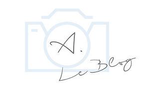 logoblog_edited.jpg