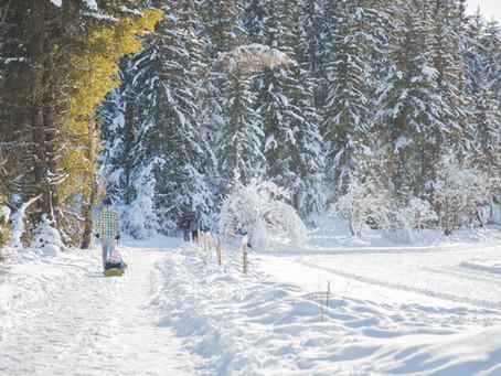 Séance photo lifestyle à la neige