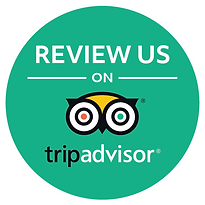 tripadvisor_reviews.png