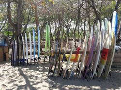 surf boards surf school cabarete