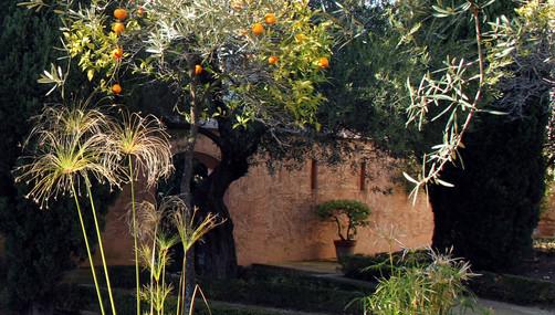 Gardens, Alcazar Palace, Jerez, Spain