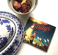 Strays album & china.jpg