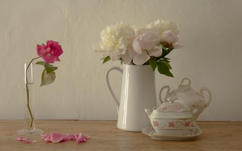 Peonies & rose