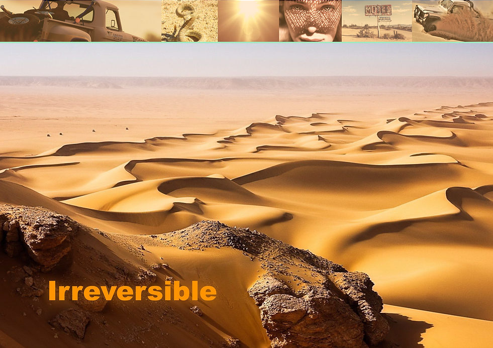 Irreversible Screenplay by Chris Roland