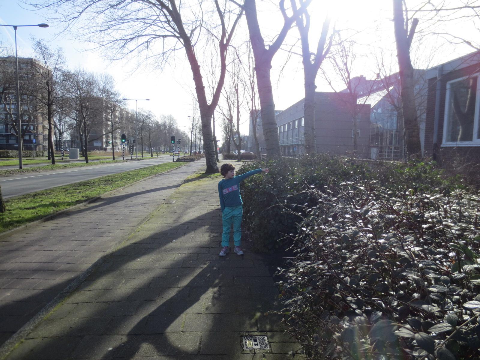 Laan der Nederlanden 150