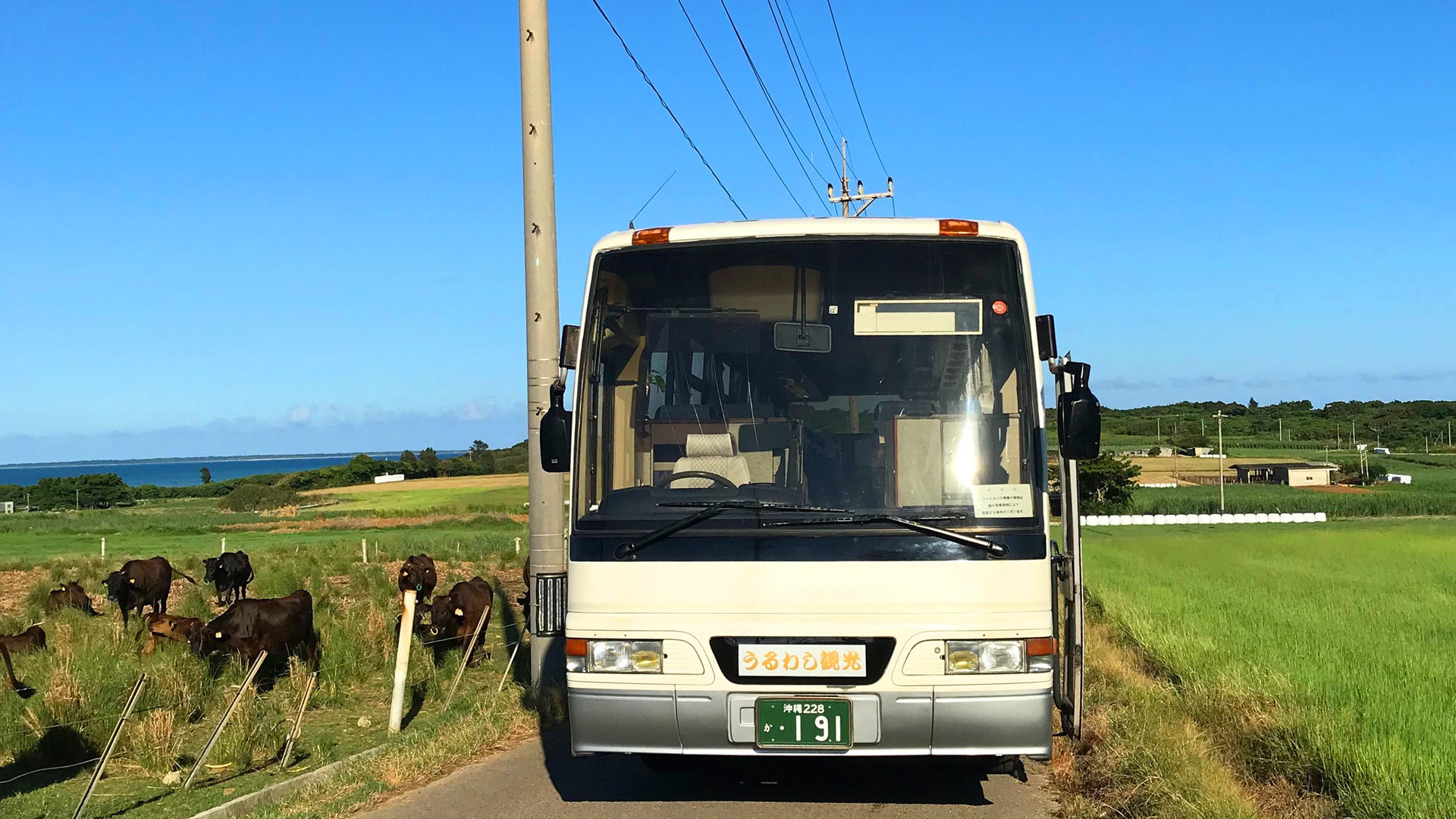 バス編集4.jpg