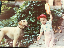 Little girl throwing a frisbee for a yellow lab (dog)