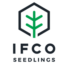 PRESENTING - IFCO seedlings.png