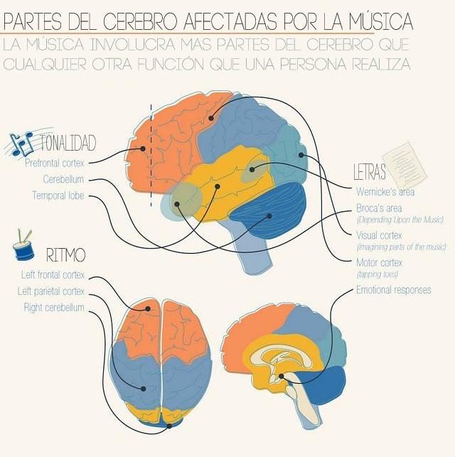 cerebro-y-musica.jpg