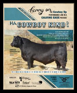 HA Cowboy Kind 8157