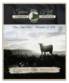Spruce Hill Catalog Cover