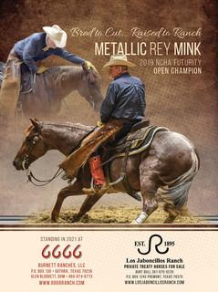 Metallic Rey Mink