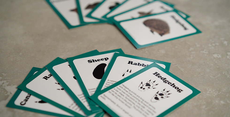 Animal Tracking Cards