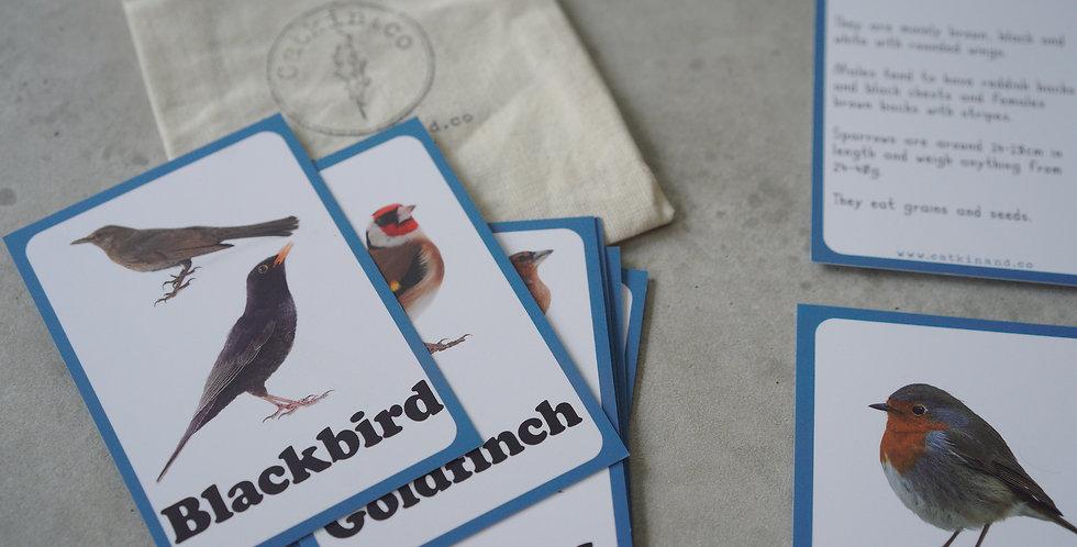 Garden Birds Discovery Cards