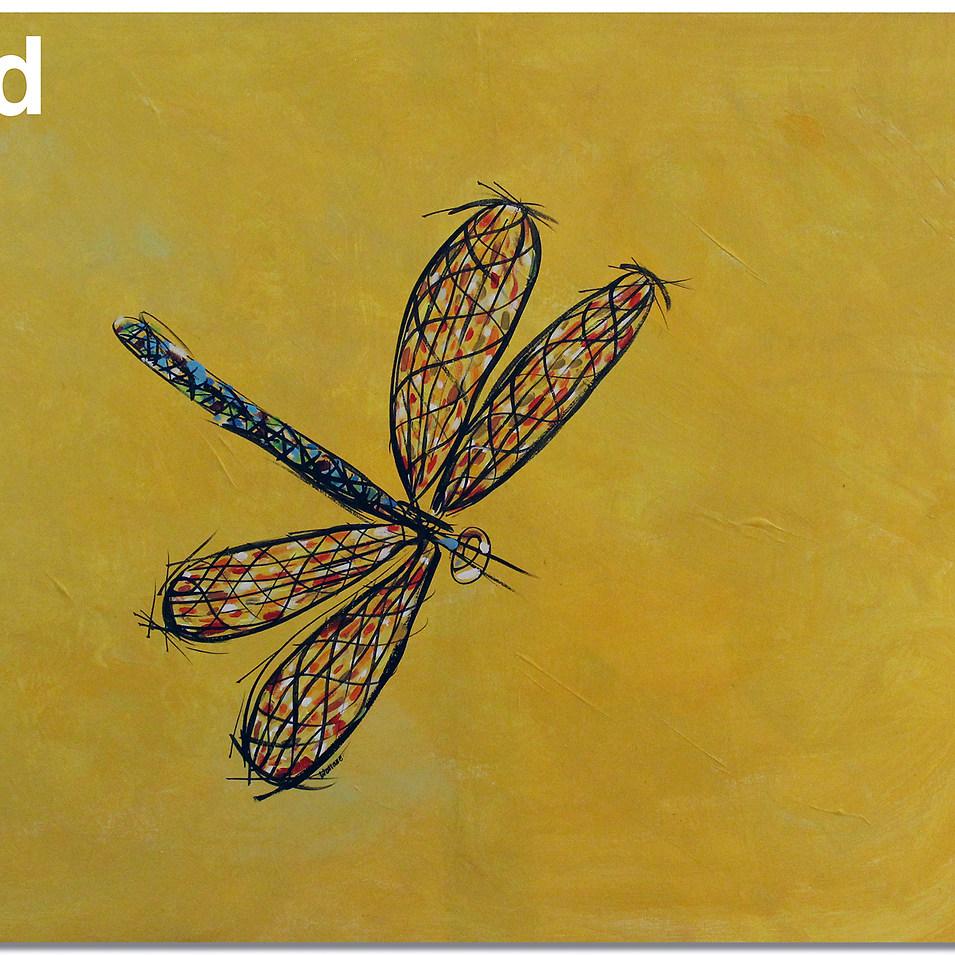 dragonfly sold.jpg