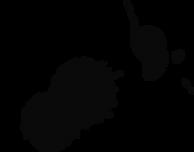 An ink splatter